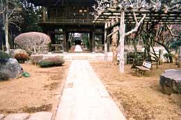 多福寺(臨済宗)