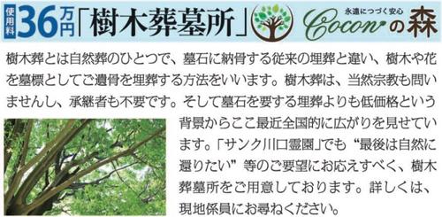 樹木葬墓所